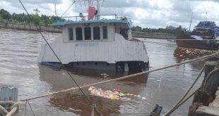 Kapal Sembako Tenggelam di Sungai Siak, Ribuan Warga Ambil Biskuit dan Mi Instan yang Hanyut. (istimewa)