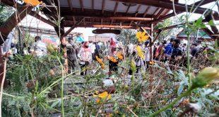 KIP Gubernur Jatim: Kampung Benteng Terbaik di Jawa Timur, Sambut New Normal Kota Probolinggo Zona Hijau Zero Covid-19