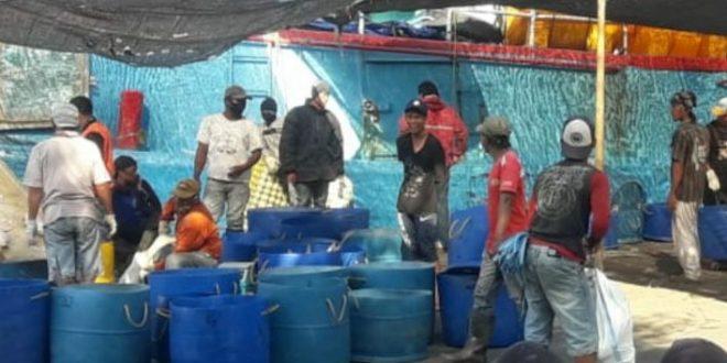 Persiapan New Normal Covid-19, Banyak Pekerja Pelabuhan Perikanan Ditemukan Tidak Bermasker