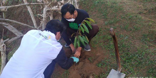 Aksi Tanam Ratusan Pohon di Hari Tani Nasional